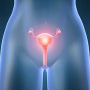 Ovarian Cancer related image