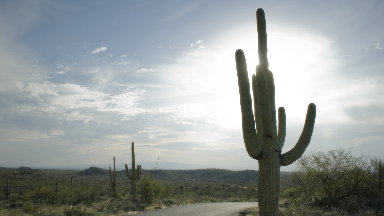 Arizona Climate Change: 3 Ways It Is Affecting Your Health