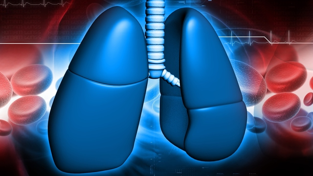 COPD and Asthma Are Different: Here's How