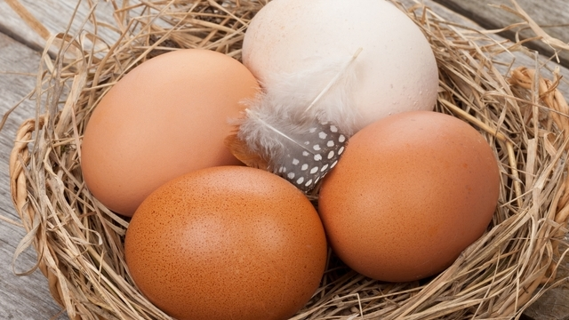 eggs reduce type 2 diabetes risk
