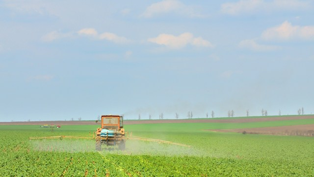 risk for Parkinson's may be linked with pesticide exposure