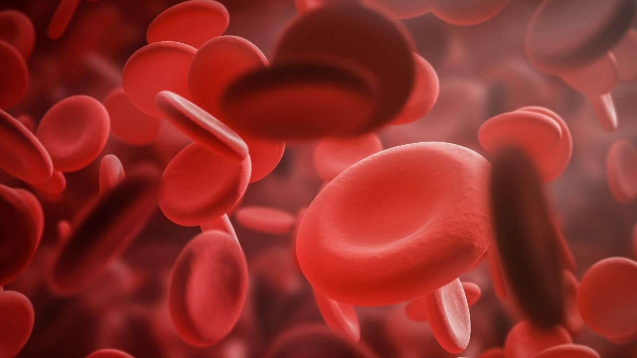 5 Most Common Reasons for Anemia