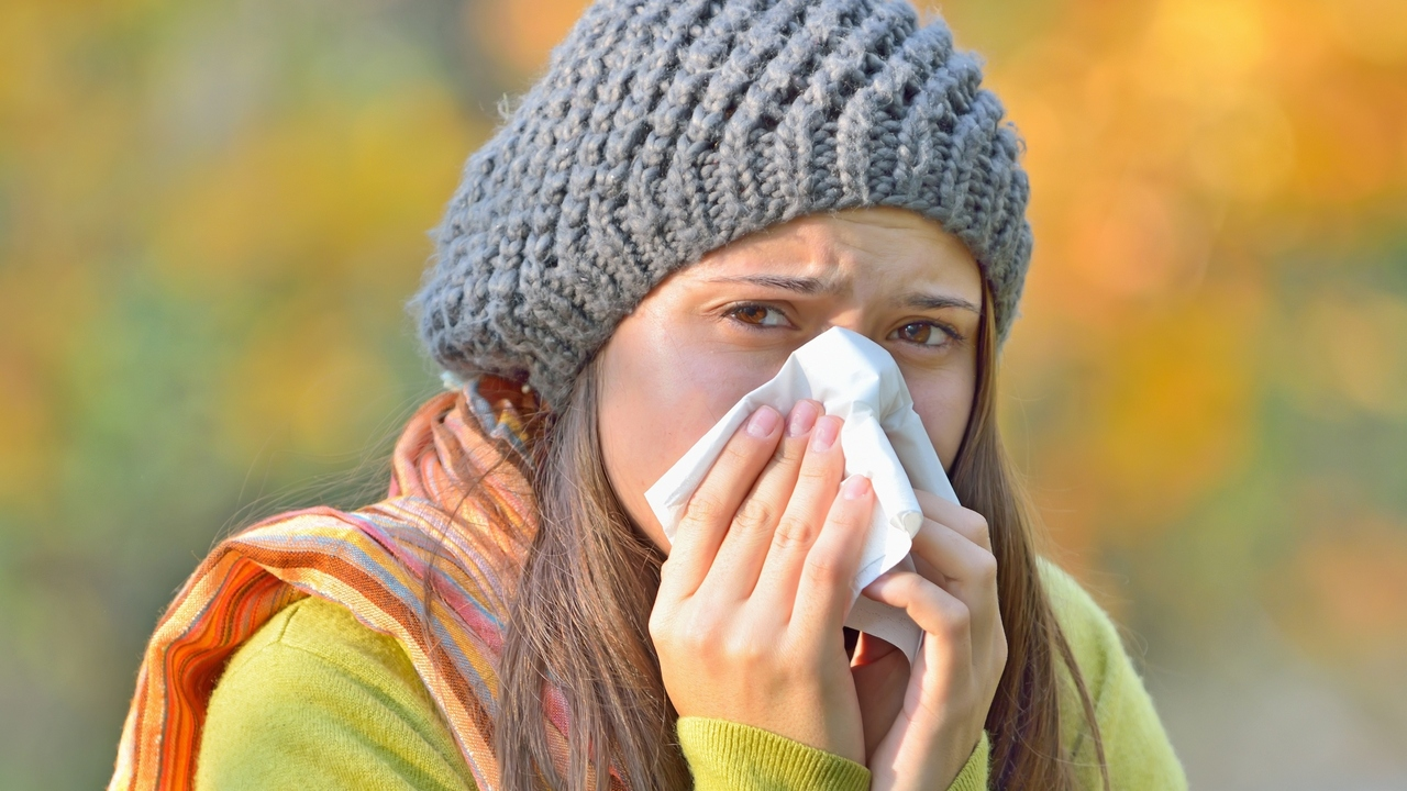 Do You Have an Allergy or a Cold?