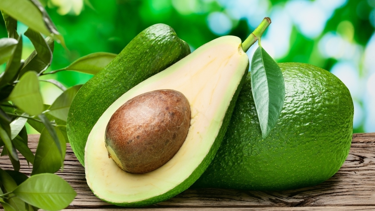 Avocados May Be a New Treatment for Leukemia