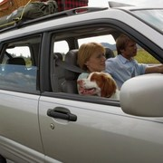 Baby Boomers take furry friends on the road