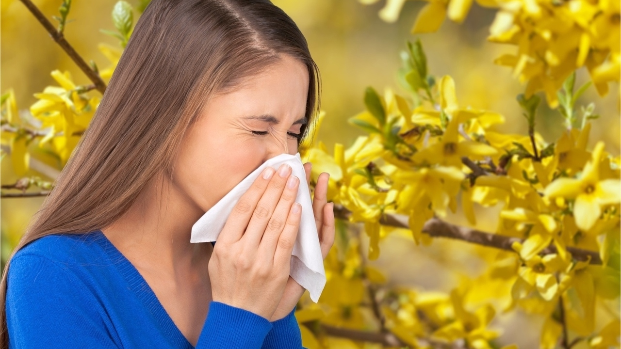 10 Best Cities for Allergy Sufferers: 5 Tips Make Life Easier
