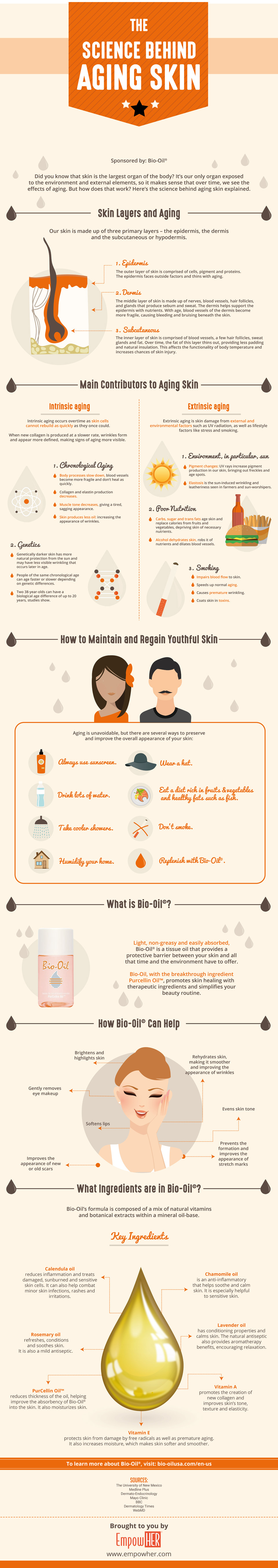 Infographic The Science Behind Aging Skin