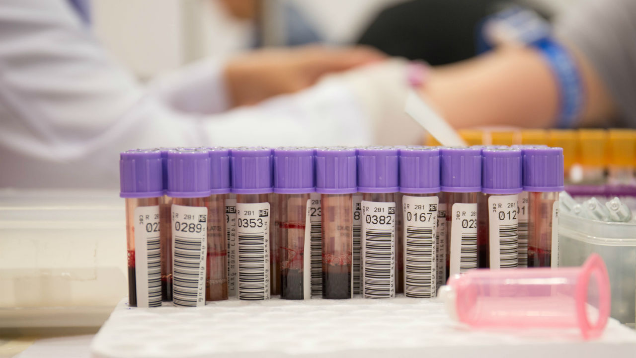 information on the importance of blood tests