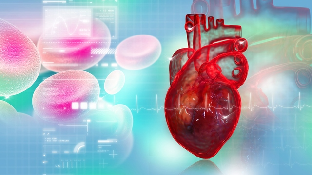 Lower Cholesterol may Protect Your Aortic Valve