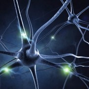 could disability in MS be linked to sodium buildup?