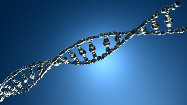study finds gene for increased risk of ovarian cancer