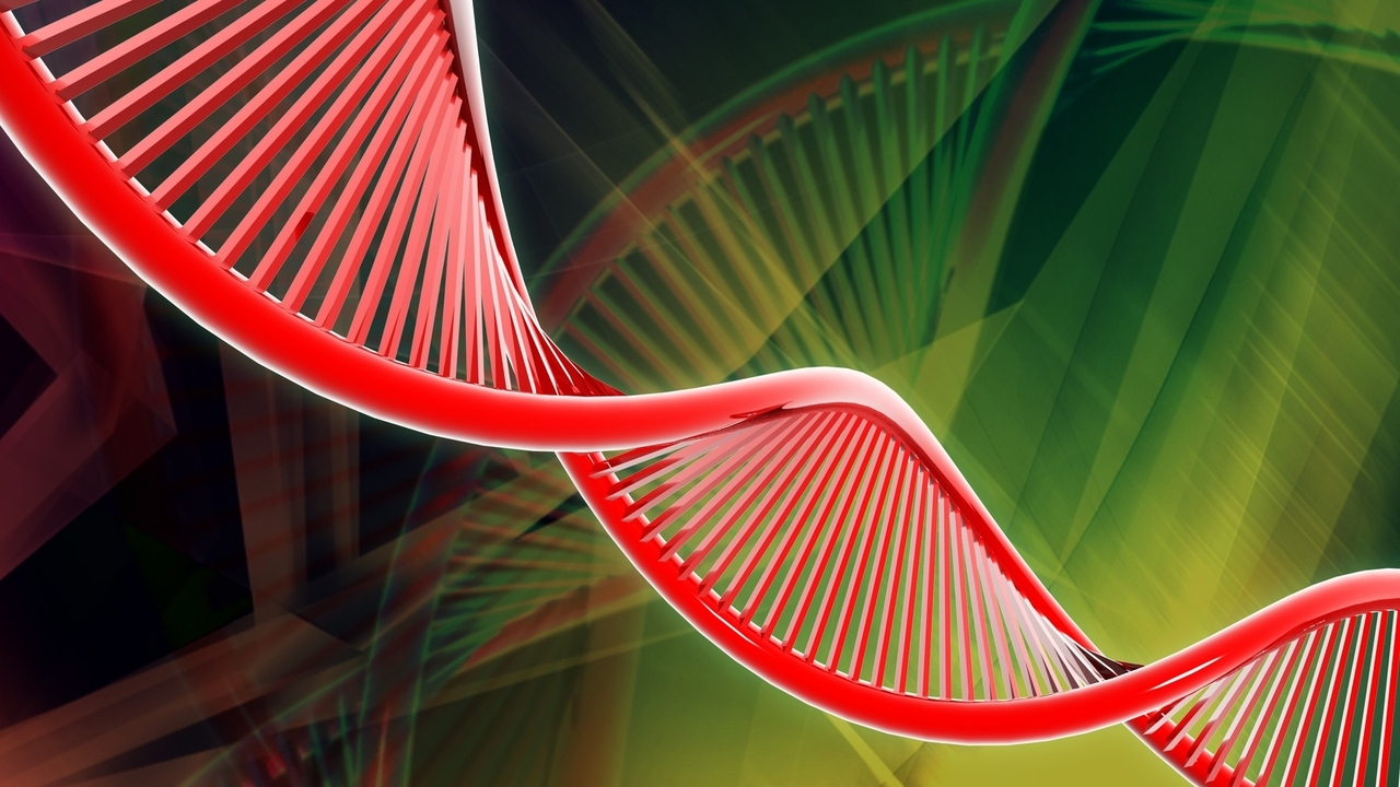 Lower Heart Disease Risk for Women: Good News for DNA Variations