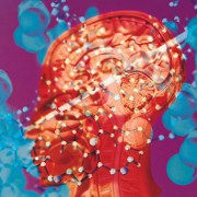 Diseases of the Brain: How is a Brain Aneurysm Repaired?