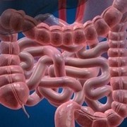 Progress in Treating Inflammatory Bowel: 'Less Fear of the Unknown'