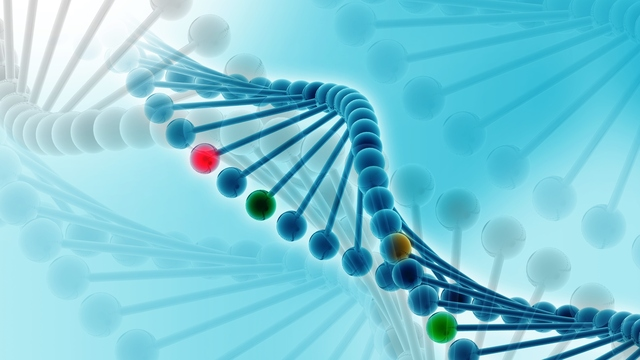 Abnormal Gene Function Causes Inherited and Non-inherited Cancers