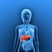 Liver Cancer related image