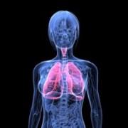 Tuberculosis related image