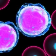 remission from aggressive leukemia after experimental therapy