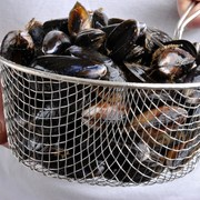 for sensitive teeth stick with mussels