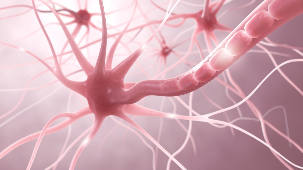 What Are the Types of Multiple Sclerosis?