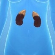 How Addison's Disease Affects Women