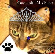cassandra95011
