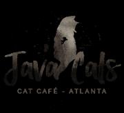 Javacatscafe