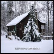 Sleeping Dog Cabin Rentals