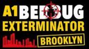 a1bedbugbrooklyn