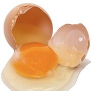 egg protein allergens